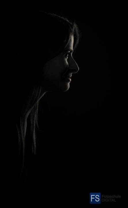 portraitlicht_12_20131117_1722259702